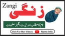 Zangi Name Meaning in Urdu Name Info Zangi Naam KA Matlab Nameinfo زنگی نام کا کیا مطلب ہے