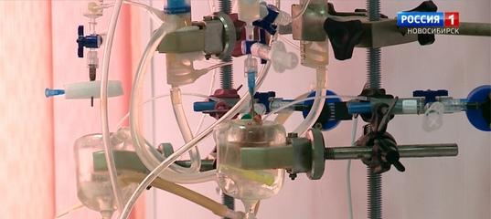 Новосибирские ученые работают над кардиопрепаратом нового поколения
