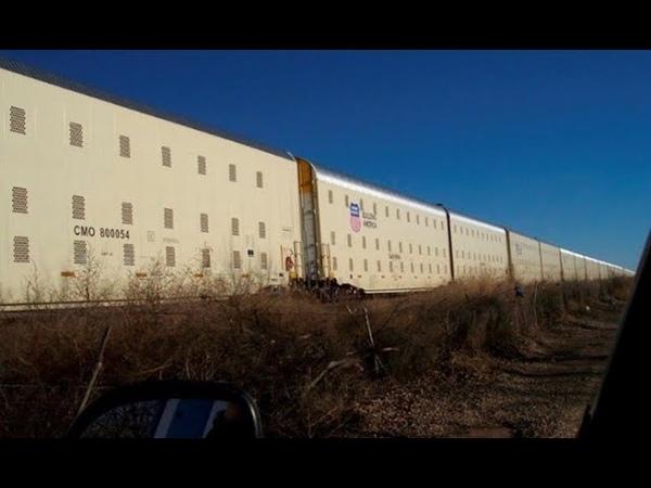 Поезда FEMA пришли в движение. К чему бы