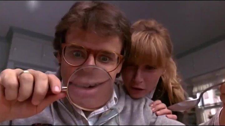 Дорогая я уменьшил детей 1989 г США Мексика фантастика комедия приключения семейный