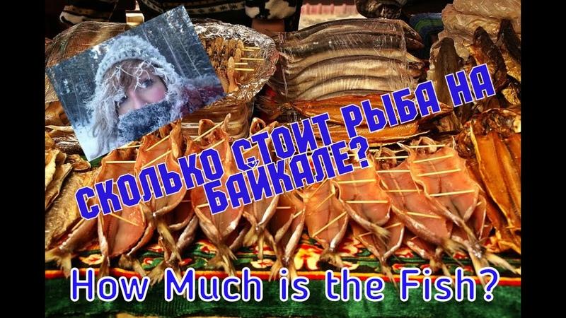 How Much Is the Fish Узнаём сколько стоит Омуль на рынке Байкала