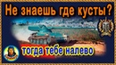 ЕСЛИ СОВСЕМ НЕ ЗНАЕШЬ КУСТЫ ▶ кривой путь лёгкого танка AMX 13 57 wot АМХ 13-57