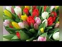 Девчонки с праздником 8 марта🌷🌷🌷. Girls with a holiday on March 8.