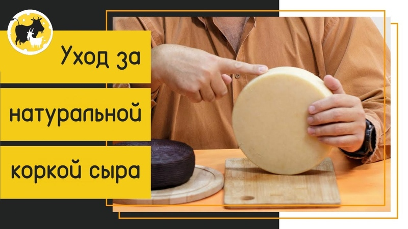 Уход за сыром в домашних условиях Убираем очаги плесени