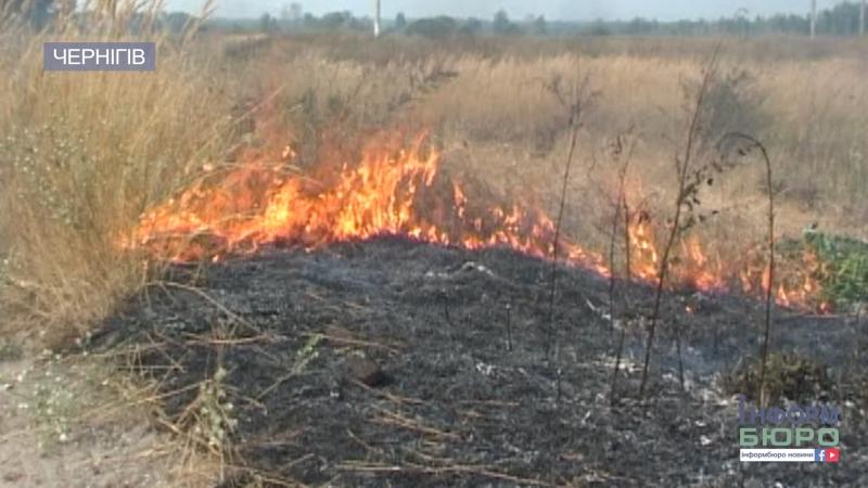 Понад 600 пожеж в екосистемах чернігівців попередили про болячки від диму