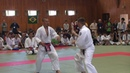 11-я Дисциплина - Томики Тошу Рандори – командный разряд