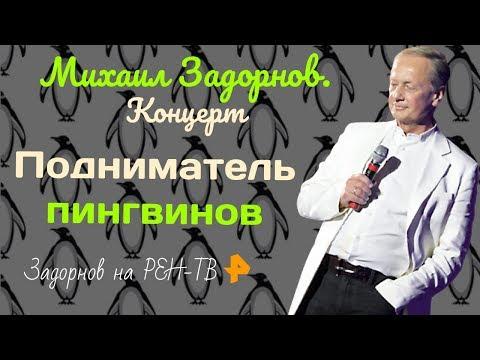 Подниматель пингвинов   Задорнов на РЕН-ТВ