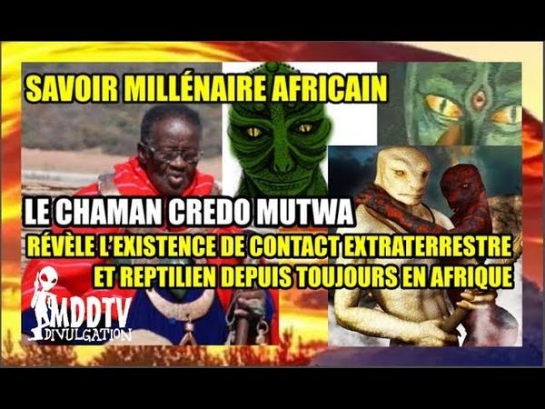 SAVOIR MILLÉNAIRE AFRICAIN CREDO MUTWA RÉVÈLE LEXISTENCE DE CONTACT E.T EN AFRIQUE MDDTV