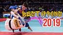 Best of Judo Ippons 2019 Лучшие броски в Дзюдо 2019