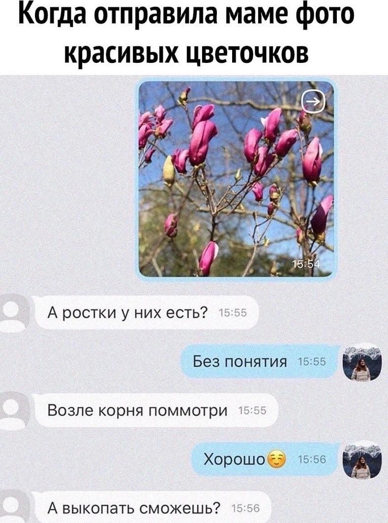 мамы такие мaмы)