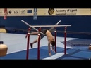 The Apparatus Has Collapsed Apparatus Malfunctions in Gymnastics