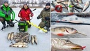 Зимняя рыбалка на БЛЕСНУ и БАЛАНСИР. Тестируем НОВИНКИ 2021