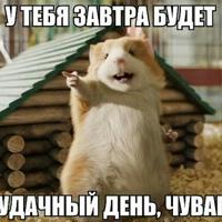 Александр Максин, 603 подписчиков