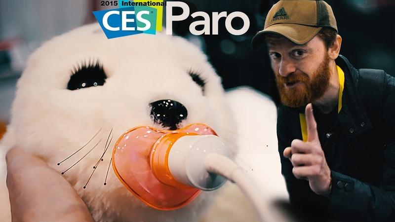 Тюлень терапевт или Японский робот PARO