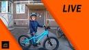 Велосипед Фэтбайк Для Детей Forward Bizon 20 Или Как Ездить На Велосипед Когда Тебе 5 Лет Велон