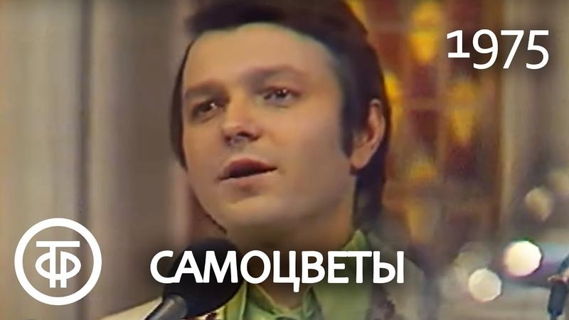 Ансамбль Самоцветы Там, за облаками Песня Марка Фрадкина на стихи Роберта Рождественского (1975)