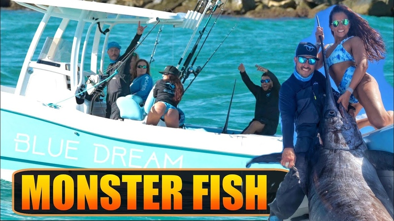 HUGE SWORD FISH !! OFF SHORE FISHING | HAULOVER INLET | BOAT ZONE